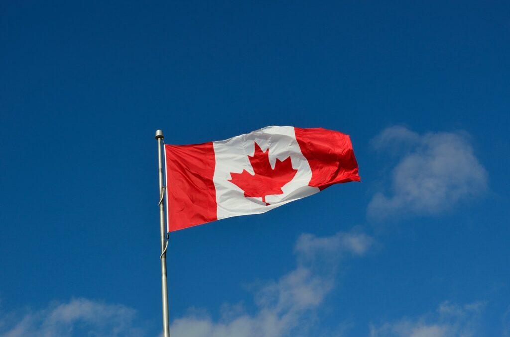 光浦靖子がカナダ留学する理由はなぜなのか【共感の嵐】